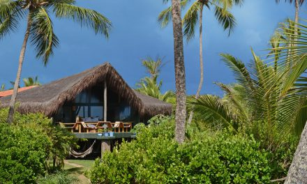 Butterfly House Bahia  – eco-luxury in the heart of the rainforest
