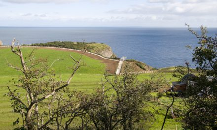 Take the long and winding road to Northern Ireland's most spectacular vistas