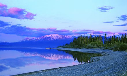 Take a scenic drive on the Alaska Highway
