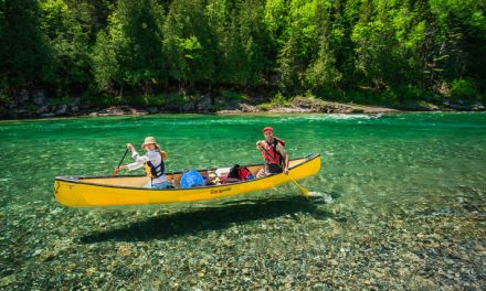 Go wild in Quebec with a wilderness holiday