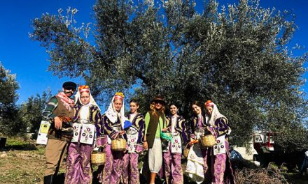 From tree to table in Ayvalik, the land of olives